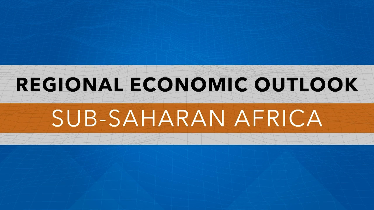 Spanish - IMF Press Briefing: African Department