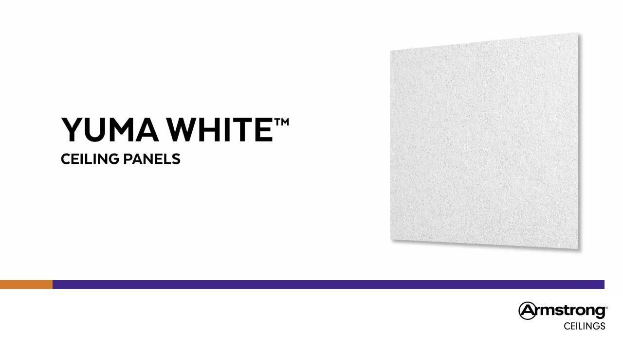 Yuma White Ceiling Tiles