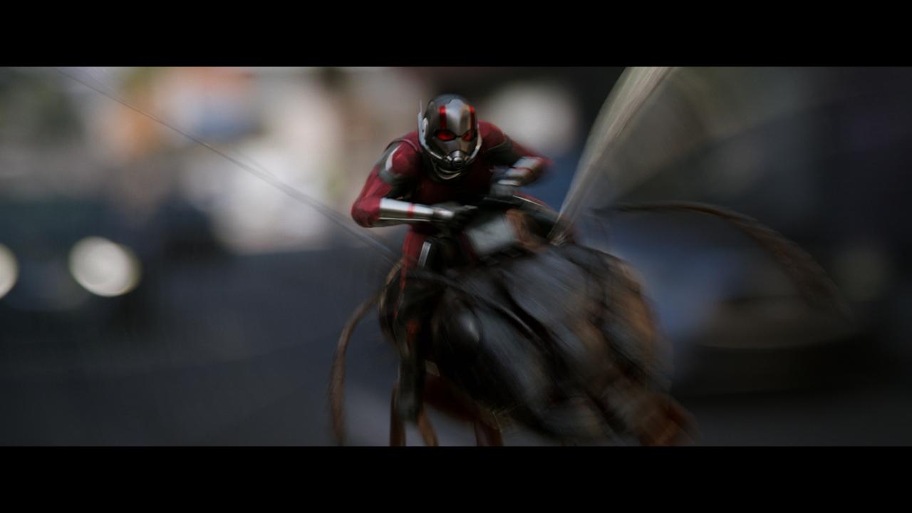 ant man 2018 subtitles english