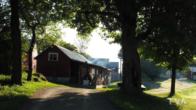 Visite de la ferme Brylee