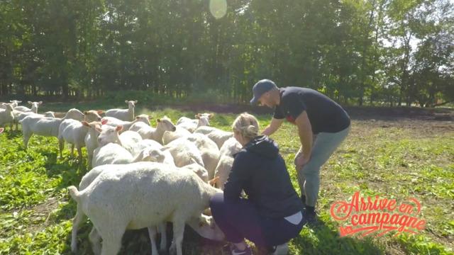Visite de la ferme La Bêlerie