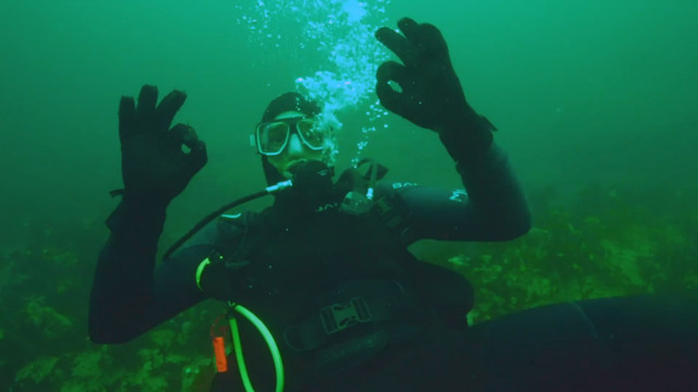La plongée