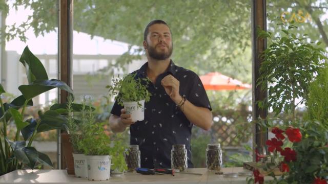Pots Masson pour plantes comestibles