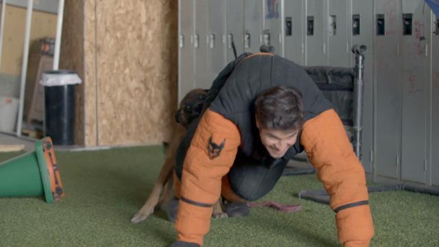 Mathieu Roy expérimente de se faire attaquer par un chien
