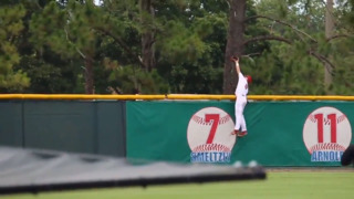 Florida Southern College outfielder makes surreal catch to save baseball game