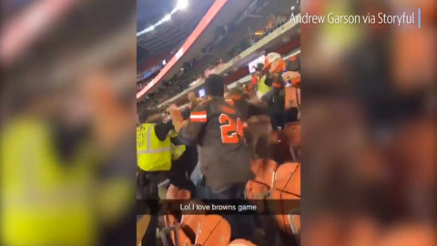 Brawl breaks out in crowd during Browns vs. Bengals game