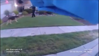 Dog attacks Utah police officers