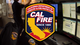 8 cases where Cal Fire disciplined employees