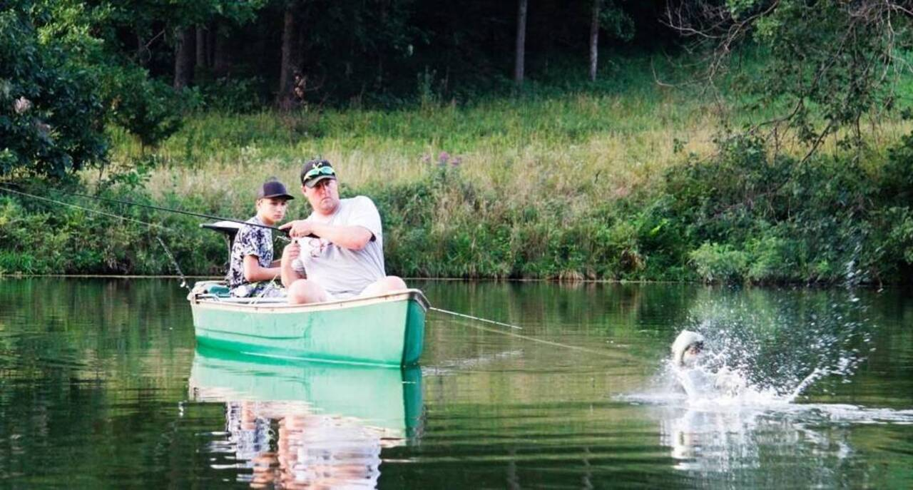 Heat eases, and shad and rainbow trout are biting in greater