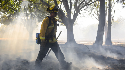 Watch West Sacramento firefighters contain grass fire in city