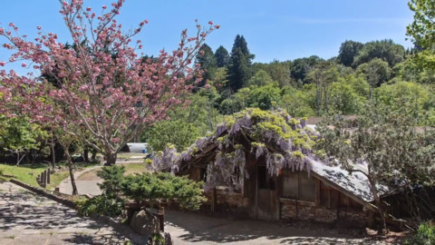 Former Carmichael resident selling unique Dogtown compound in Bay Area for $4.8 million