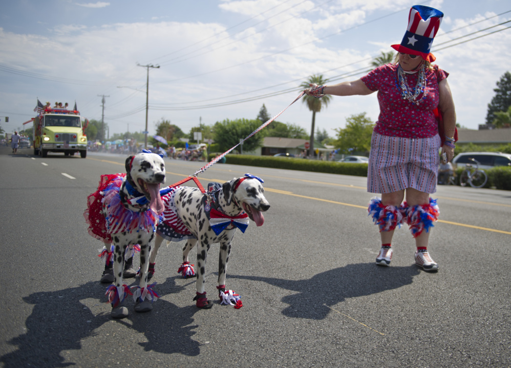 Tips for your dog and other pets on the Fourth of July