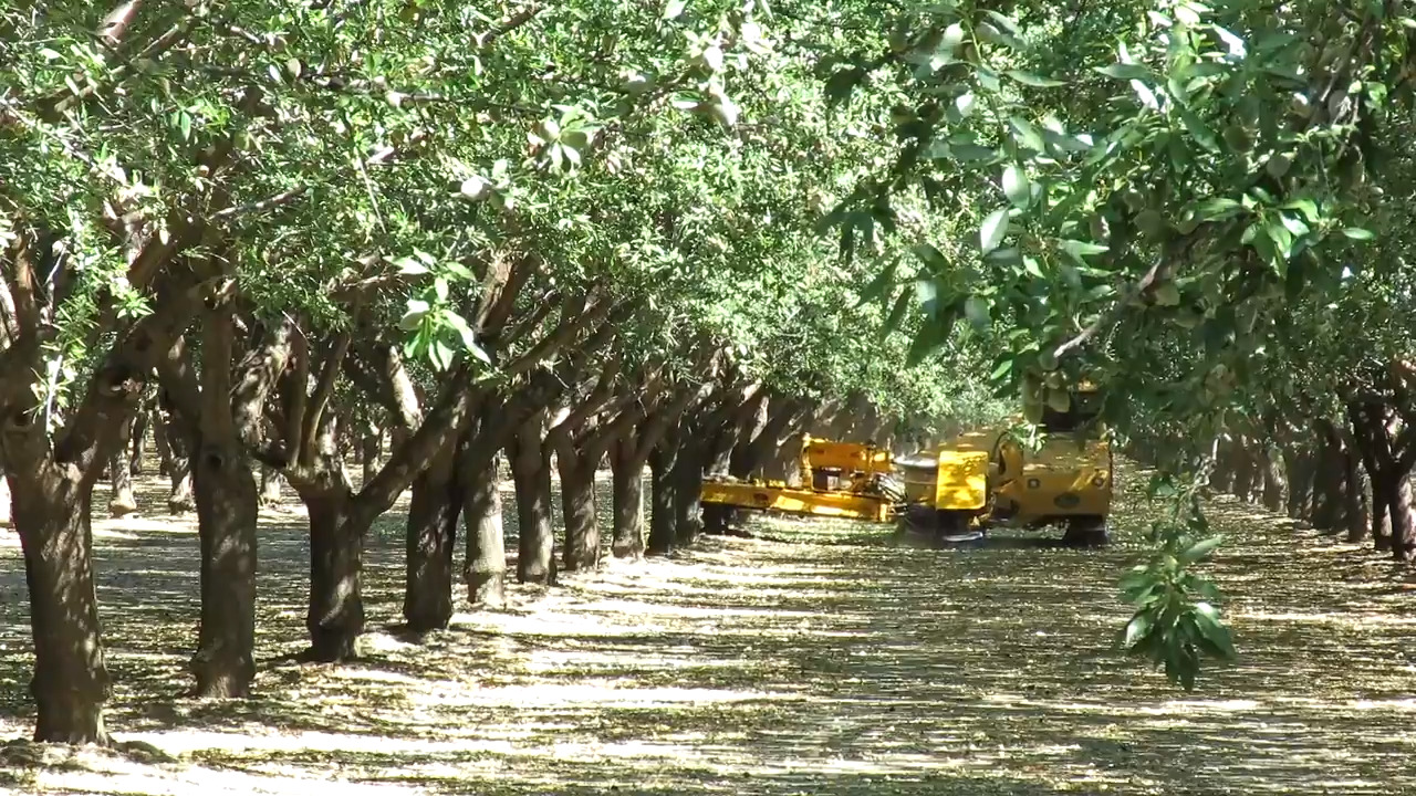 Fresno County is rated No. 1 in the nation in agricultural production