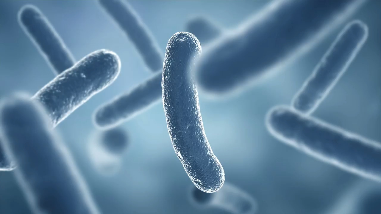 Third person dies from Legionnaires' outbreak linked to NC fair, officials say