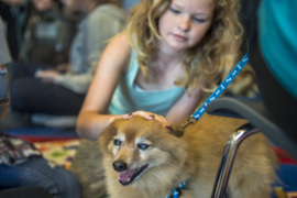 Take a stress break with these therapy dogs and their kid patients