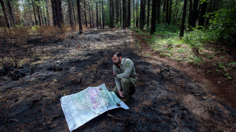 U.S. Forest Service relents in California firefighting dispute, state to recoup millions