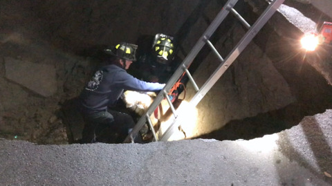 Video captures 'risky' rescue after off-leash dog falls into deep San Diego sinkhole