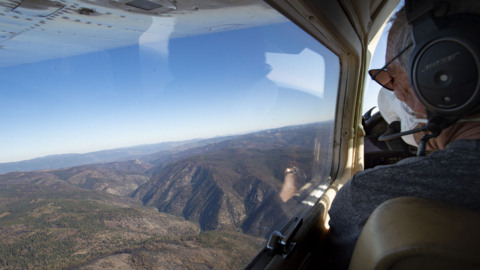 See view from an airplane of Plumas forest burned by Bear Fire
