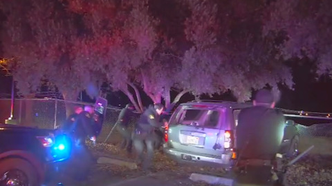 Video: What happened in Cal Expo shootout killing deputy, K-9, suspect