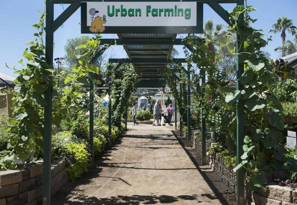 Roses In Garden: California State Fair Farm Shows Residents What They Want