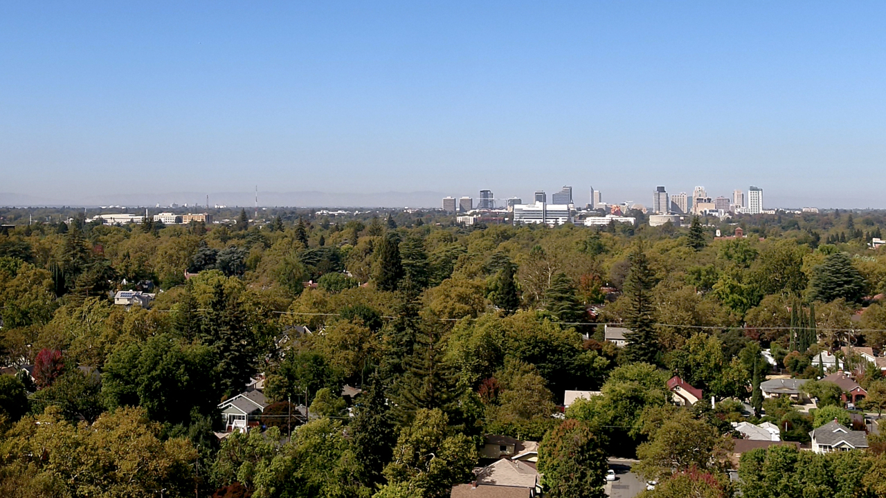 How Sacramento's urban forest divides the city — and some neighborhoods are left behind