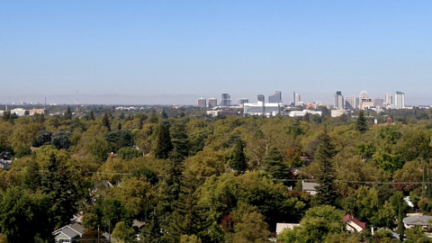 How Sacramento's urban forest divides the city, in health and in wealth