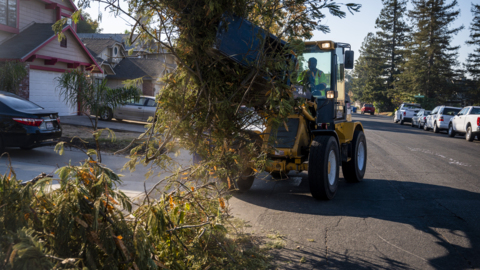 See 'The Claw' begin fall leaf collection in Sacramento