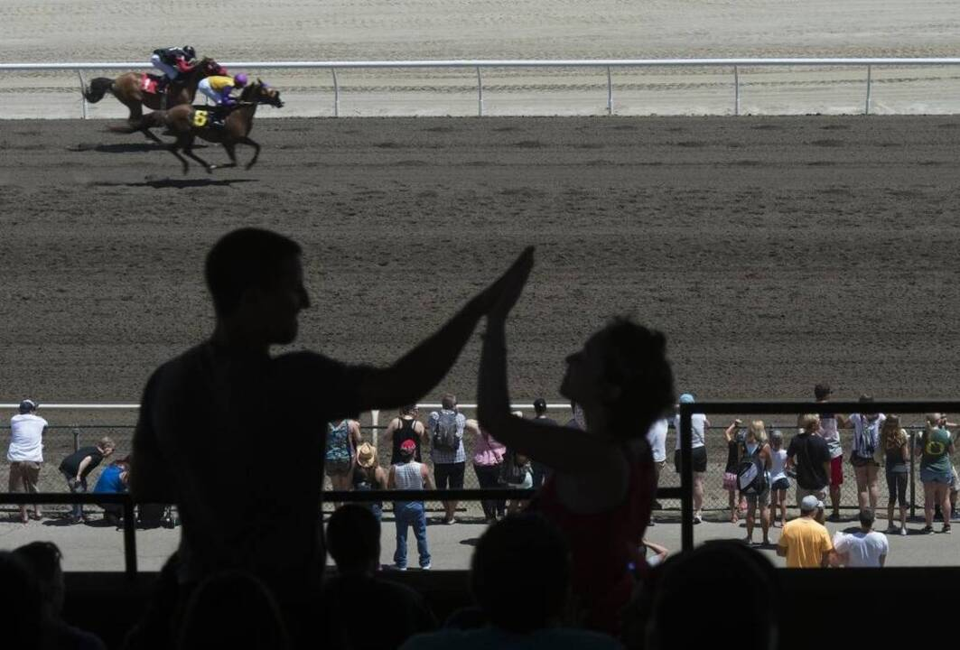 Dozens of California racehorse deaths shape new law that lets state suspend licenses