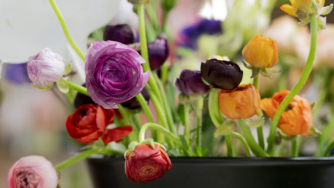 Here's how they prep for Mother's Day at this longtime Sacramento florist