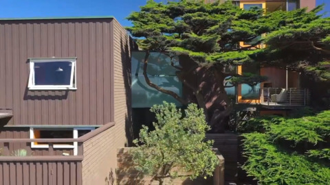 Inside San Francisco home with a glass bridge, unique gardens available for $8 million