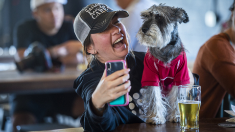 Hair of the dog? No problem. Breweries and tap houses open doors to pooches
