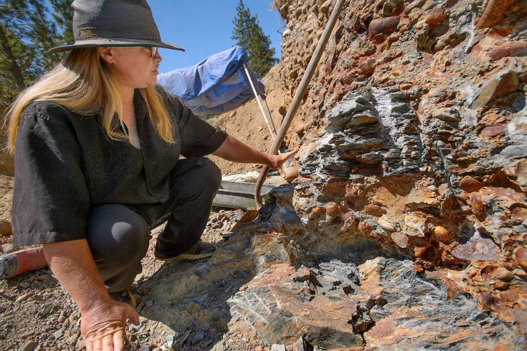 California woman goes looking for gold, finds gold and diamond | The