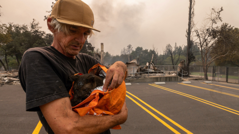 'There was flames on both sides.' How Deer Park resident fled Glass Fire and saved a cat