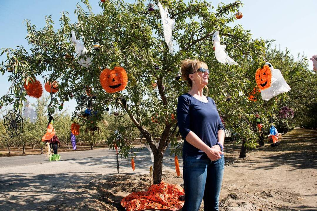 The story behind the decorated almond tree at the corner of a Hughson orchard