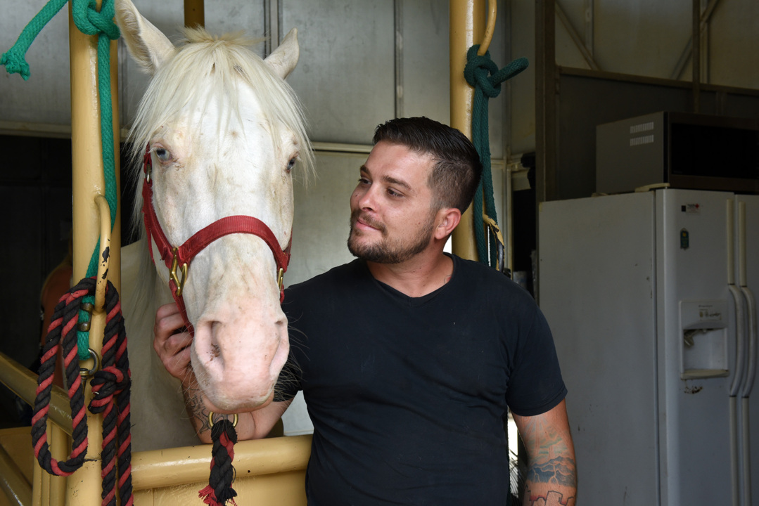 River the horse, who was dumped and at the brink of death