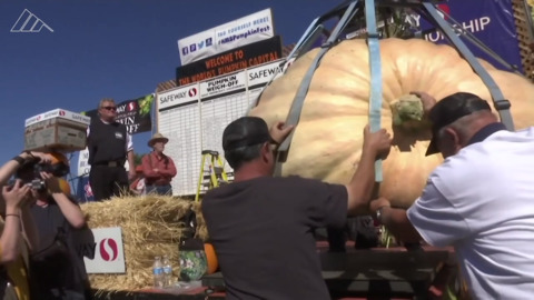 2,170 pounds of pumpkin crushes the competition