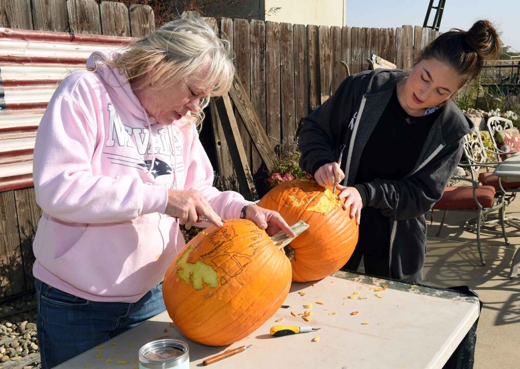 What to do with nearly 300 pumpkins? Friends create howling fun Halloween attraction