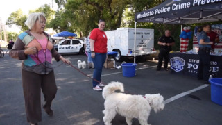 Dog walkers get tips on how to help keep their neighborhoods safe