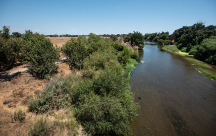 Names of Note: Tuolumne River Trust honors advocates. Ocean inspires another award