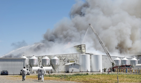 Gemperle examines losses in huge henhouse fire near Ceres. Egg donations will go on