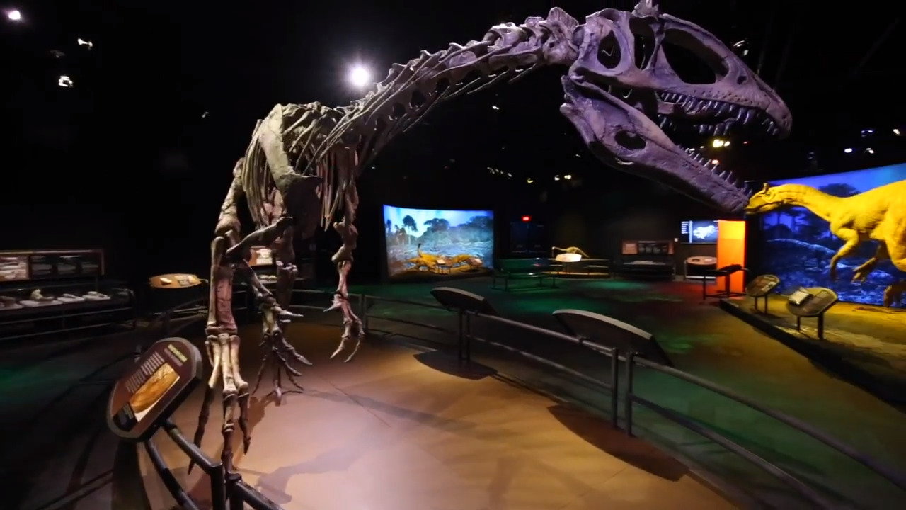'Antarctic Dinosaurs' brings the icy experience of digging for bones to Discovery Place