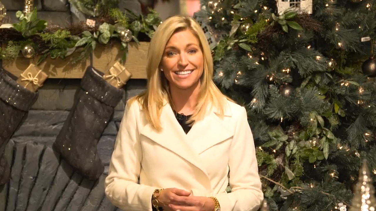 Note To Fox News This Is Not Palm Tree >> Ainsley Earhardt Talks Fox News Role New Christmas Special