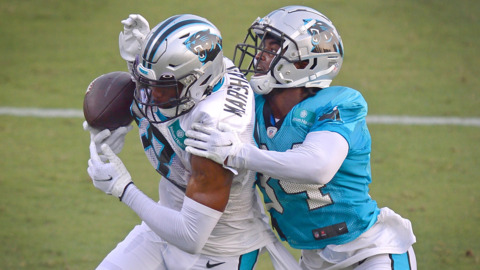 Panthers Saturday practice celebrates return of fans and football