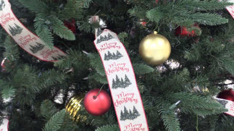 Salvation Army programs ramp up to help area families have a Merry Christmas