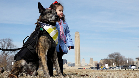 Special flag honoring service and sacrifice of K-9 veterans raised at National WWI Museum