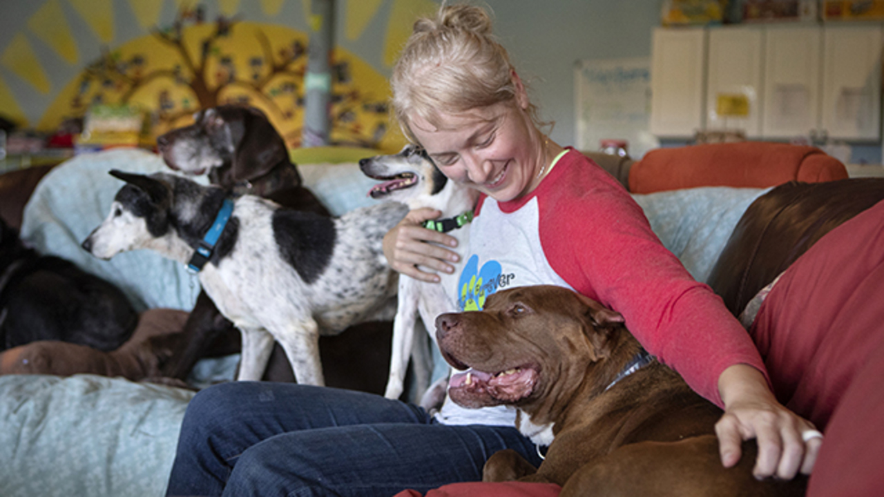 Always and Furever takes in senior dogs | The Kansas City Star