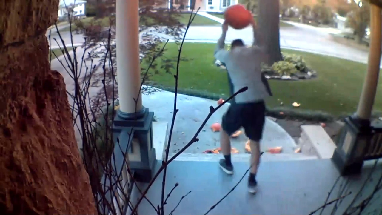 This man is a pumpkin smasher, video shows. Two Kansas boys would like a  word with him | Charlotte Observer