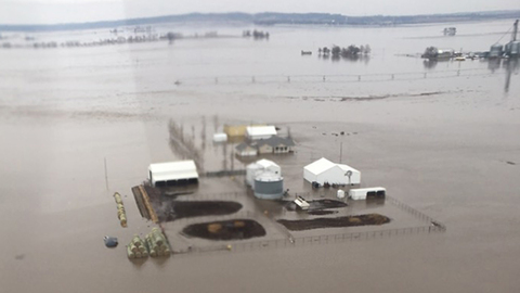 'It's in our soul': Missouri farmers tormented by floods will not give up the land