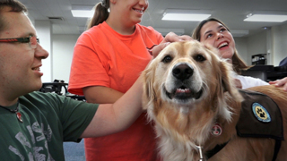 Reducing anxiety, raising grades: therapy dogs 'bring a calm' to KC-area schools