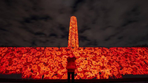 Liberty Memorial ablaze with animated poppies in dramatic WWI commemoration